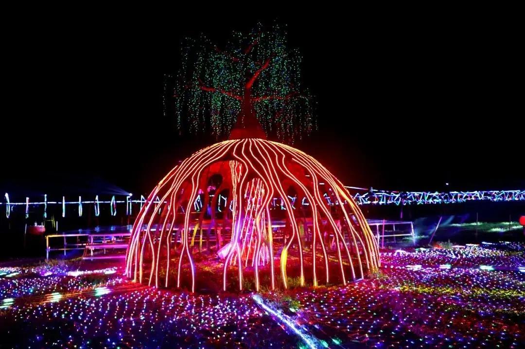 2021湖南枫林花海灯光节十大作品赏析